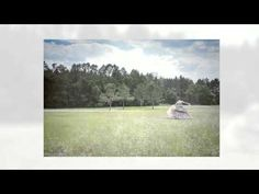 Field of Dreams Field Of Dreams, Portrait Photography, Tapestry, Concept, World, Youtube, Painting, Art, Hanging Tapestry