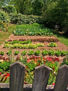 Garden - Amish Farm Ohio~ I live in the city and I dream of living in the country on a farm with a garden .....