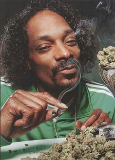 The majority of people who are not in the hiphop scene, assume that everyone who listens to hiphop smokes weed every day. (As sung in the song of Snoop Dog)