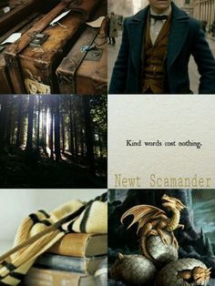 I low key want to be a Hufflepuff now because of Newt, but I'm happy with Ravenclaw