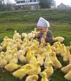 Happiness is Baby ducks. (Except the bird she has in her hand, He is not happy lol) Animals For Kids, Cute Baby Animals, Farm Animals, Animals And Pets, Funny Animals, Funniest Animals, Beautiful Creatures, Animals Beautiful, Beautiful Cats