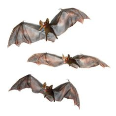 Set of Three Halloween Bats with Flashing Eyes