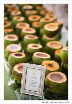 Cocktails in coconuts = brilliant! When doing a wedding in Puerto Rico, this is something your venue catering manager can offer. It's a great idea for cocktail hour or even a welcome beverage prior to the ceremony. Great wow factor!!