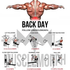 ✅ - Via 6 days Workout Program! Big Back Workout, Lat Workout, All Body Workout, Good Back Workouts, Gym Workout Chart, Workout Routine For Men, Gym Workout Tips, Biceps Workout, Back Exercises