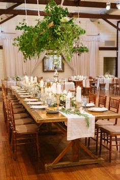 Overhead florals over a wedding tablescape create a warm glow in the Granary at Pippin Hill Farm and Vineyards in Charlottesville, Va. Farm Wedding, Wedding Reception, Virginia Wineries, Charlottesville Va, Wedding Decorations, Table Decorations, Summer Weddings, Rustic Charm, Wine Country