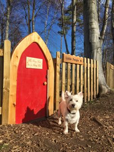 "Not a fairy garden, but a ""real"" fairy door! Scotland with the Wee White Dug Real Fairies, Outdoor Living, Outdoor Decor, Fairy Gardens, Little People, Dog Friends, I Love Dogs, Homestead, Fairy Tales"