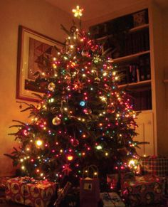 Beautiful Christmas Trees, Pictures And Photos.