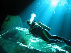 Riviera Maya - Cancun ,Playa del Carmen, Tulum & Puerto Morelos Scuba diving & coral reef fish photos