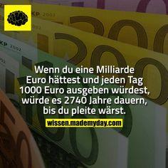 ein Leben als Milliardär