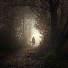 photo: Mystical road | photographer: Leszek Bujnowski | WWW.PHOTODOM.COM