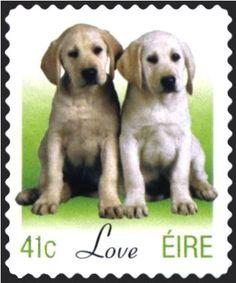 Sello: Puppies (Canis lupus familiaris) (Irlanda) (Greetings) Mi:IE 1483,Sn:IE 1452,Sg:IE 1565