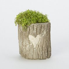 Cute idea for a log planter - carve initials in a heart.