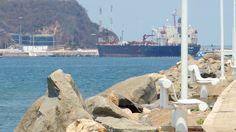 Playa San Pedrito Manzanillo Colima vista desde las Brisas.