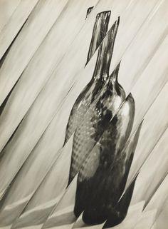 Gaspar Gasparian 'Mediunic', 1952 © Estate of Gaspar Gasparian