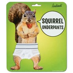 """Squirrel Underpants - Are you sick and tired of squirrels running naked in the trees around your house? Have you had to hide your children's eyes when a tiny furry nudist flashes himself while you're on a walk? We've got the answer, Squirrel Underpants! Each pair of minuscule briefs has a 3"""" waist and is made of 95% cotton and 5% spandex. Also good for hamsters, frogs and gerbils."""