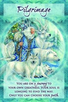 Oracle Tarot, Oracle Deck, Angel Guidance, Doreen Virtue, Angel Cards, Popular Artists, Card Reading, Deck Of Cards, Love And Light