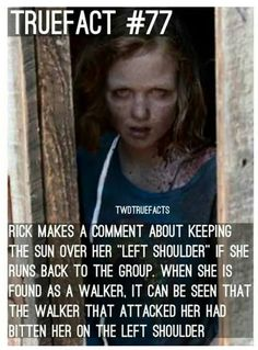 Sh*t! If you didn't peek out of the damn car! You would be alive! You and Carl would have a love life! Instead Enid is taking over!! Sophia!