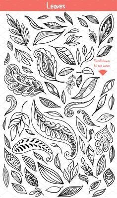 Illustrations Product Images ~ Floral Doodles C… ~ Creative Market Doodle Art Drawing, Zentangle Drawings, Mandala Drawing, Art Drawings, Mandala Art Lesson, Zen Doodle, Drawing Ideas, Doodle Patterns, Doodle Designs