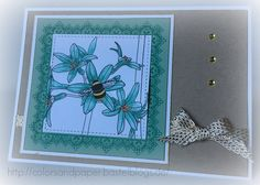 Colors & Paper - Stampin' Up!