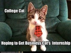 Hope those skills he picked up at the campus career center's mock interview come in handy.
