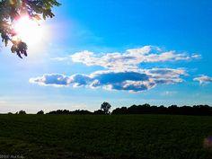 Duck flying low cloud 1