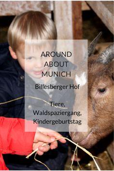 Wer möchte Schafe füttern, kleinen Lämmchen Fläschchen geben, auf einen Getreideberg steigen und sich darin wälzen? All das und mehr kann man auf dem Billesberger Hof in Moosinning (nur knapp 28 km von München Hbf entfernt) erleben. Begleitet wird man von Biobauer Mogli, dem Landwirt aus Leidenschaft, der einem das Bauernhofleben erfrischend nahe bringt.  #wandern #ausflüge #kinder #familie #münchen #bayern #bauernhöfe