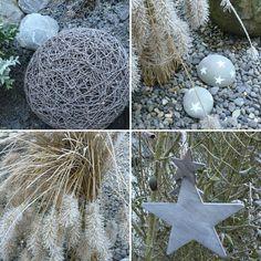 Wohnbrise: Garten im Winter