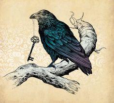 how to draw a crow or raven - Bing Images Crow Art, Raven Art, Bird Art, Rabe Tattoo, Memes Arte, Quoth The Raven, Crows Ravens, Keys Art, Art Prints