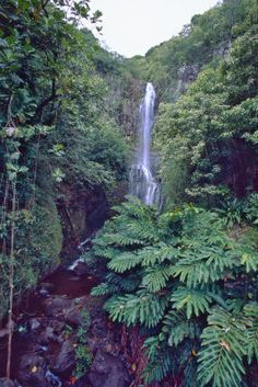 Wailua Falls, Hana Highway, Maui, Hawaii. On the road to Hana. #waterfall