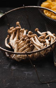 Nesse inverno, diversifique seu cardápio com o fettuccine ao molho de cogumelos frescos da Chef Roberta Julião. Prepare a receita e surpreenda!