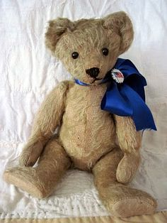 A rare hard to find Aetna Bear