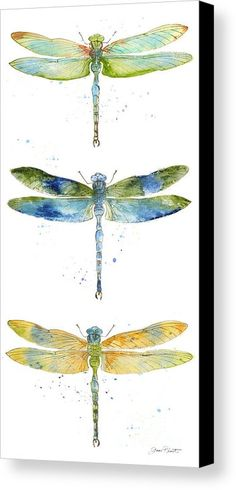 Dragonfly Bliss-jp3443 Canvas Print by Jean Plout.  All canvas prints are professionally printed, assembled, and shipped within 3 - 4 business days and delivered ready-to-hang on your wall. Choose from multiple print sizes, border colors, and canvas materials.