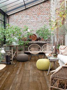 20 rincones con plantas dentro de casa