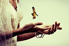 Hawaii Wedding Photography -  #butterfly