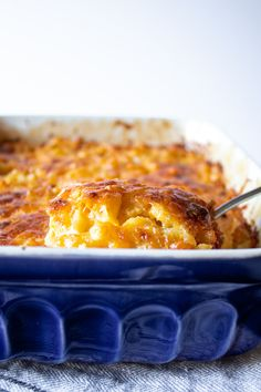 Southern Baked Macaroni and Cheese - The Hungry Bluebird Southern Macaroni And Cheese, Best Macaroni And Cheese, Macaroni Cheese Recipes, Mac And Cheese Homemade, Baked Macaroni, Mac Cheese, Pasta Recipes, Easy Casserole Recipes, Sweet Potato Casserole