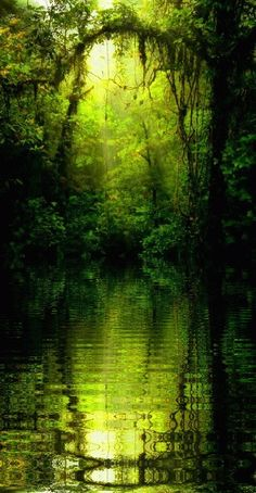 River in the Faerie Woods.  If you drink from its waters you will never leave the forest.