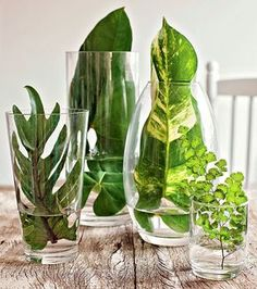What to put in a glass vase Many original ideas! What to put in a glass vase Many original ideas! When decorating a glass vase we always resort to the typical flowers. Today we also want to propose other simple but very original ideas. Wedding Centerpieces, Wedding Table, Wedding Decorations, Table Decorations, Garden Wedding, Party Wedding, Green Party Decorations, Plant Centerpieces, Church Wedding