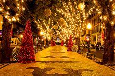Funchal, Madeira, Portugal ~ Christmas
