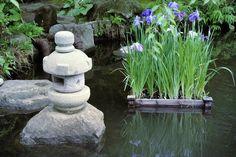 Zen Meditation Music: Reiki Healing Music, Soothing Music, Calming Music...