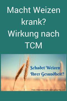 6 TCM-Tipps, wie du mit Weizen umgehen kannst, damit er dir nicht schadet. Und alles zu seiner Wirkung. #Weizen #Gluten