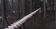 A Giant Xylophone Powered By Gravity Plays Bach's Cantata 147 via LittleThings.com