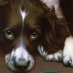 Larger Than Life - Springer Spaniel II by Nigel Hemming - painting. I love this so want a copy. Springer Spaniel Puppies, English Springer Spaniel, Beautiful Dogs, Animals Beautiful, I Love Dogs, Cute Dogs, Field Spaniel, Cockerspaniel, Dog Portraits