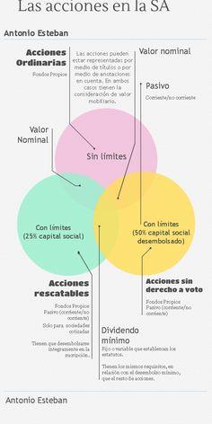 Caracterización de las acciones en la SA (Infografía)