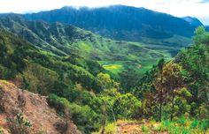 20 Great Oahu Hikes | HONOLULU Magazine #hawaii #honolulu #oahu #hiking #hikes