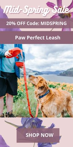 The Paw Perfect Leash includes: Leash, Water Bottle, Waste bag dispenser and a Hook for used waste bags. Water Containers, Pet Paws, Large Dog Breeds, Once In A Lifetime, Injury Prevention, Spring Sale, Animal House, Baby Prints, Going To The Gym