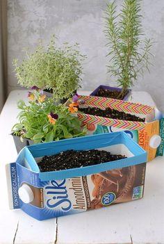 Milk Carton Herb Garden