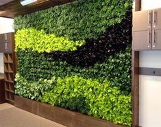 Exude a Fresh Aura in Your Homes with 20 Green Living Walls GSky Green Wall Retreat Ferienwohnung in Landscape Walls, Landscape Design, Home Design, Interior Design, Interior Ideas, Design Ideas, Planting Bulbs In Spring, Jardin Vertical Artificial, Artificial Green Wall