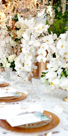 white orchids and gold