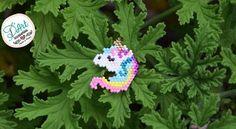 Llega para ustedes una linda y más pequeña versión de nuestro mágico Unicornio Encuentra esta opción como pin para adornar tu chaqueta o como el accesorio de tu presencia aquí en D'Art Accesorios @accesorios_d_art #accesoriosDArt #ginnaandyessika #accesoriosdemoda #originalaccesoriosdart #handmade #hechoamano #hechoencolombia #bogota #meencanta #usaquen #unicorn #unicornio #joyastejidas #arte #artesania #elmejoregalo #animal #animales #animalesmagicos #naturaleza #ver...