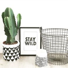 Black and white, cactus nursery Black White Nursery, Nursery Decor, Room Decor, Old Room, Baby Co, Nursery Neutral, Baby Boy Nurseries, Fashion Room, Porch Decorating